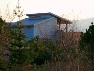 Nice Cottage with Deck and Internet Access - Thingvellir vacation rentals