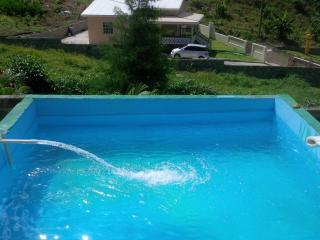 Comfortable Villa with Internet Access and Television - Soufriere Mountains vacation rentals