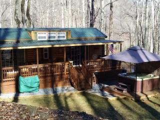 Family Cabin - Waynesville vacation rentals