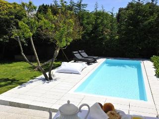 Luxe and Luxuries - Light Blue Villa - Porto vacation rentals