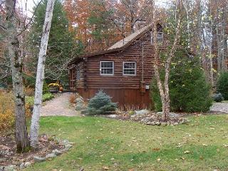 Sweet Log Cabin Just a Short Walk to Sandy Beach On Winnipesaukee (GRI15B) - Meredith vacation rentals