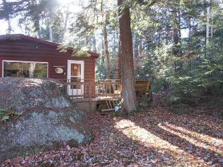 Lake Pemigewasett Cottage (DAS17B) - New Hampton vacation rentals
