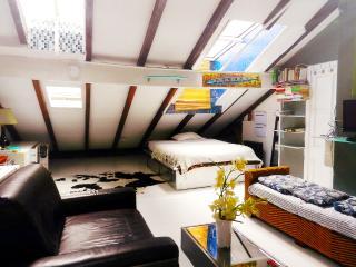 WOW!! Stunning Chelsea Skylight Artist Loft - New York City vacation rentals