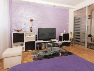 Arena Superb studio, sleeps2, wifi, parking - Serbia vacation rentals