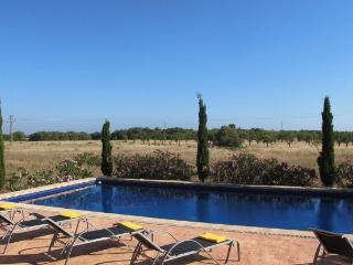 Modern New Villa with Swimming Pool in Campos - Campos vacation rentals
