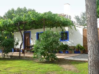 Cortijo Algabia, nice cottage with pool in Granada - Alhendin vacation rentals