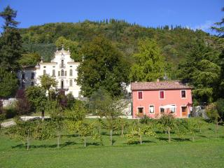 Villa with pool between Venice and Dolomite 6/8 pe - Vittorio Veneto vacation rentals