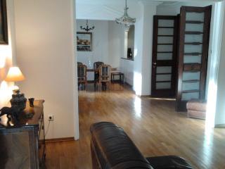 DOWNTOWN PRESIDENTIAL SUITE - Belgrade vacation rentals