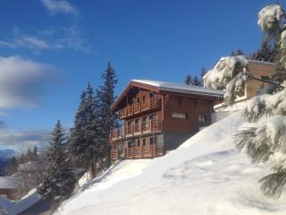 Luxury chalet, centre ski resort, views, catering - Anzere vacation rentals