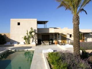 Immaculate 4 Bedroom Villa in Formentera - Formentera vacation rentals