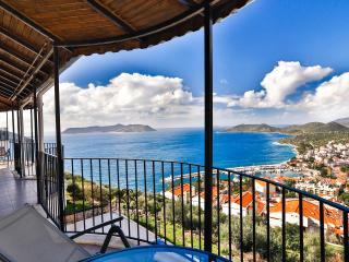 Nice Condo with Internet Access and Dishwasher - Kas vacation rentals