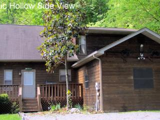 Last minute special 6/11 - 16    Majestic Hollow - Townsend vacation rentals