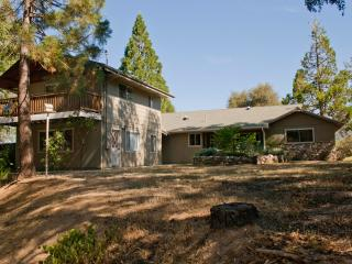 Lazy Bear Lodge Yosemite and Bass Lake! - Sanger vacation rentals