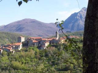 Perfect 2 bedroom Condo in Villafranca in Lunigiana - Villafranca in Lunigiana vacation rentals