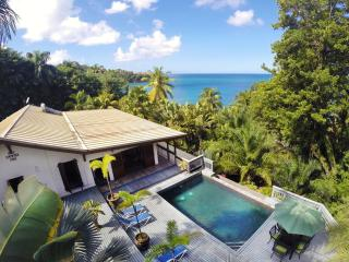 Barefoot Beach Villa - Castries vacation rentals