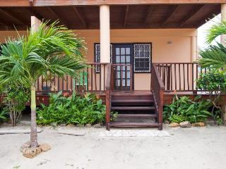 Oceanfront condo w/ easy beach access & pool in Belize! - Placencia vacation rentals