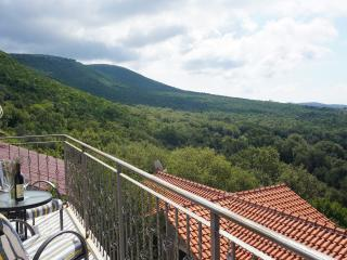 Nice Villa with Internet Access and A/C - Klinci vacation rentals