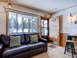 Park Meadows Lodge 1C by Ski Country Resorts - Breckenridge vacation rentals