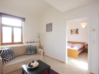 Stilish fully equipped 1 bedroom city apartment - Czech Republic vacation rentals