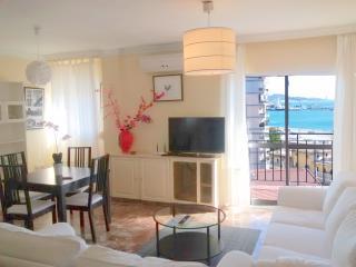 MALAGA HISTORICAL CENTRE (NICE APARTMENT) - Malaga vacation rentals
