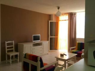 Loft apartment el medano bay - El Medano vacation rentals