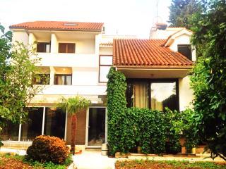 New, modern apartment on the beach - Okrug Gornji vacation rentals