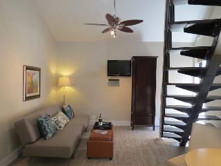 DuPont Circle-Adams Morgan Loft Studio. Kitchenette, Parking, Metro 3 blks - Washington DC vacation rentals