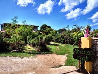 Moringa Ingadi Villa - Treasure Beach vacation rentals
