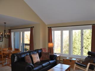 Sugarbush Slopeside Condo 2BR/2BA - Sugarbush-Mad River Valley Area vacation rentals