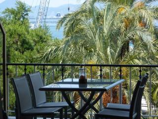 CANNES - Nice apartment,  terrace on the Croisette - Cannes vacation rentals