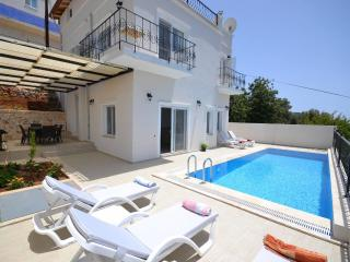 Holiday Villa in Kordere with charming sea view131 - Antalya Province vacation rentals
