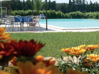 Agriturismo Masseto - Campiglia Marittima vacation rentals