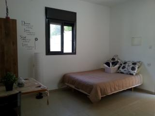 1 bedroom Apartment with Internet Access in Acre - Acre vacation rentals