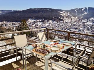 Stylish flat in the Vosges with terrace overlooking the mountains, close to the ski resort and lake of Gerardmer - Gerardmer vacation rentals