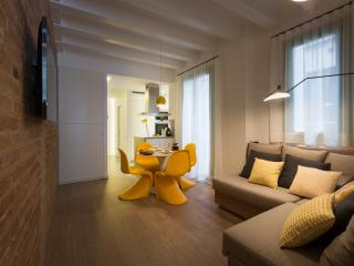 TOP CLASS NEW 2BD AP Sun Lift Metro HiSpeed Wifi - Barcelona vacation rentals