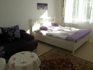 Apartment Meixner Mariánské Lázně - Marianske Lazne vacation rentals