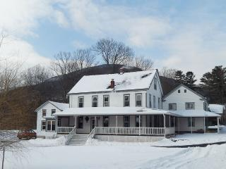 The Arlington - Civil War Era House - Palenville vacation rentals