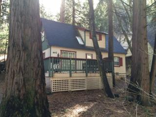 Relaxing, Comfortable Cabin - Lake Arrowhead vacation rentals