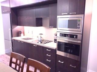 2 bed 2 bath LUXURY condo ALL NEW must see! - Toronto vacation rentals
