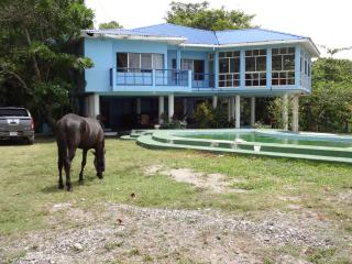 Ensuenos del Mar SA - La Ceiba vacation rentals