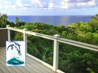 DELUXE TRI-LEVEL OCEAN VIEW BLUFF HOME - Princeville vacation rentals