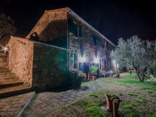 Holiday in the middle of the nature and the silenc - Civitella Paganico vacation rentals