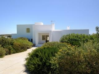 4 Bedroom Villa in Paros - Paros vacation rentals