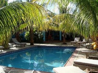 P9 Diver's Friendly Home / Villa Olivia - Kralendijk vacation rentals