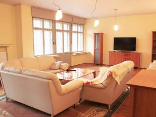 Bright 3 bedroom Condo in Karlovy Vary with Internet Access - Karlovy Vary vacation rentals