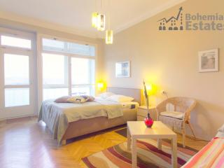 Vyšehrad Apartment - Prague vacation rentals