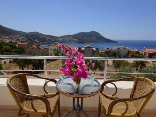 Dalkiran Duplex Apartment (4) - - Kalkan vacation rentals