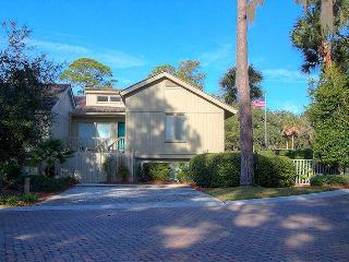 Turtle Lane Club 01 - Sea Pines vacation rentals