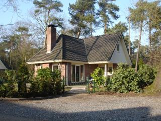 Holidays Veluwe Woods: Handicapped & Seniors - Beekbergen vacation rentals
