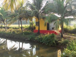 Om Lake Resort - Arambol vacation rentals